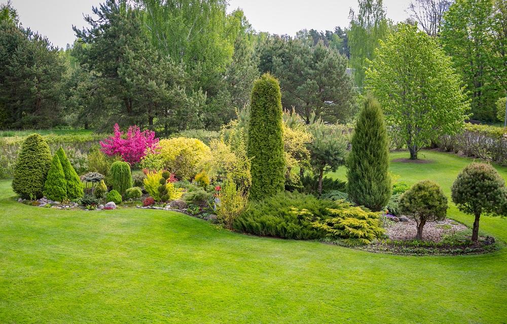 Sigrid Absoloni aed Tahkurannas. Foto: Sigrid Absolon